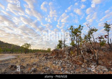 Macquerel Sky at Sunrise at Chillagoe, Northern Queensland, QLD, Australia - Stock Photo