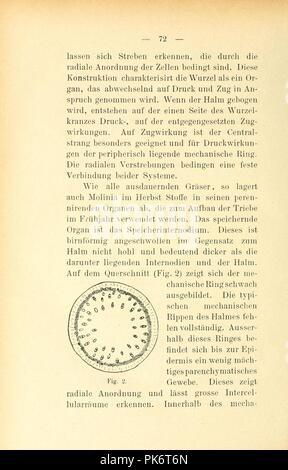 Berichte der Schweizerischen Botanischen Gesellschaft = (Page 72) - Stock Photo