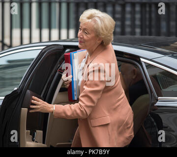 Downing Street, London, UK. 11 September 2018. Andrea Leadsom, Leader of the Commons in Downing Street for weekly cabinet meeting. Credit: Malcolm Park/Alamy Live News. - Stock Photo