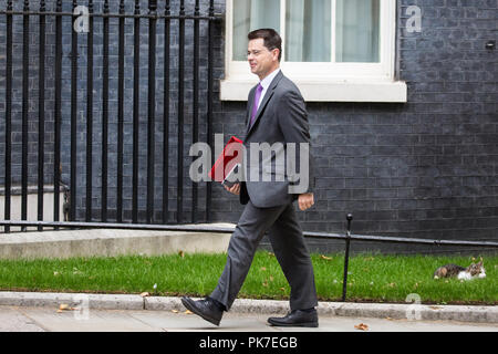 London, UK. 11th September, 2018. James Brokenshire MP, Secretary of State for Housing, Communities and Local Government, arrives at 10 Downing Street for a Cabinet meeting. Credit: Mark Kerrison/Alamy Live News - Stock Photo