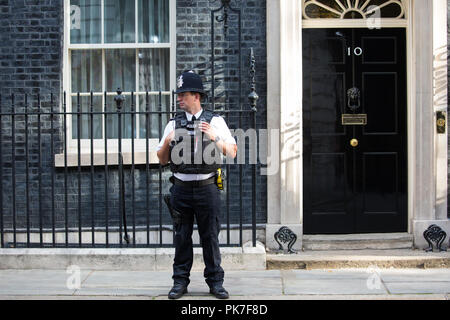 London, UK. 11th September, 2018. A police officer on duty outside 10 Downing Street during a Cabinet meeting. Credit: Mark Kerrison/Alamy Live News - Stock Photo