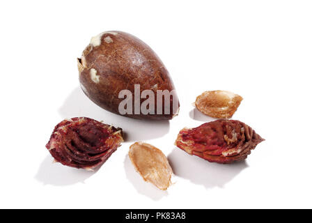 Five different fruit cores on white background. - Stock Photo