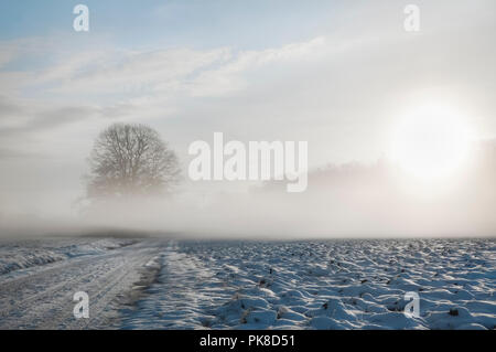 Dreamy winter landscape with a snowy country road and field covered by a cold fog, at sunrise, on a February morning, near Schwabisch Hall, Germany. - Stock Photo