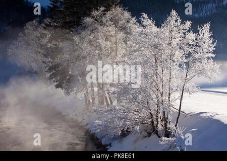Kalter Wintermorgen an der Salzach, Pinzgau, Österreich - Stock Photo