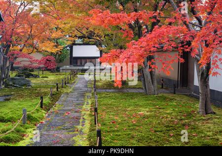 Autumn colour in Japan. Daitoku-ji, Kyoto. The entrance to the garden of Obai-in zen temple in autumn - Stock Photo