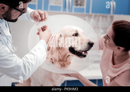 Funny dog looking at his pretty owner - Stock Photo