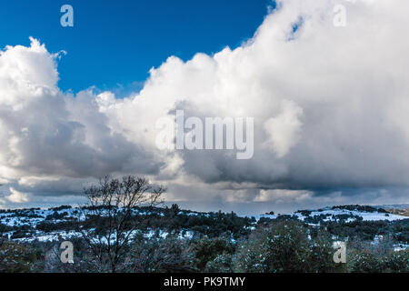 Dramatic cloud filled sky on a cold winter day with snow covered hills in landscape background and coast live oaks and tall bare black oak - Stock Photo
