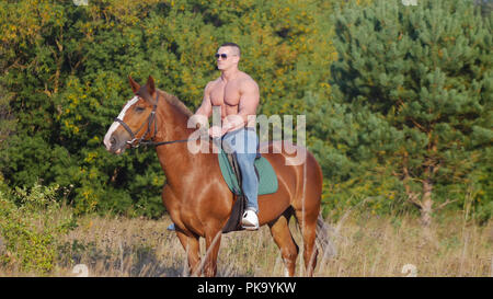 Brutal strong young man rides a horse on the field in the summer - Stock Photo