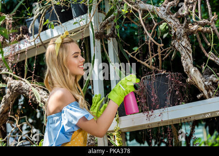 side view of beautiful smiling girl in rubber gloves holding sprayer and watering plants in greenhouse - Stock Photo