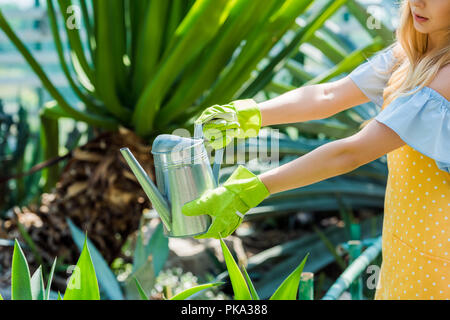 cropped shot of young woman in rubber gloves watering plants in greenhouse - Stock Photo