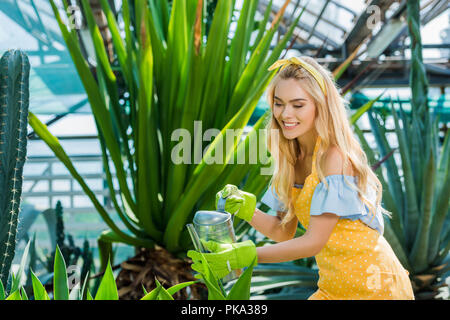 beautiful smiling young woman in rubber gloves watering plants in greenhouse - Stock Photo