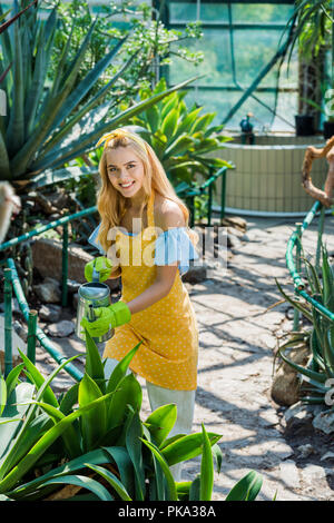 high angle view of beautiful girl watering plants and smiling at camera in greenhouse - Stock Photo
