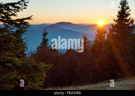 Rays of red sun setting among pines, spruce trees against smoky mountain range covered in purple grey mist under warm light cloudless sky on a warm fa - Stock Photo