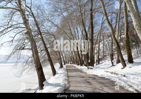 Alley of trees on the snowed  banks of lake Orestiada in Kastoria, Greece - Stock Photo
