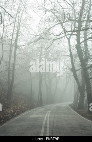 Empty country road in fog. - Stock Photo