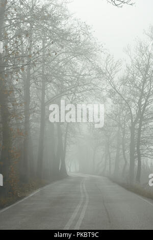 Empty country road in fog - Stock Photo