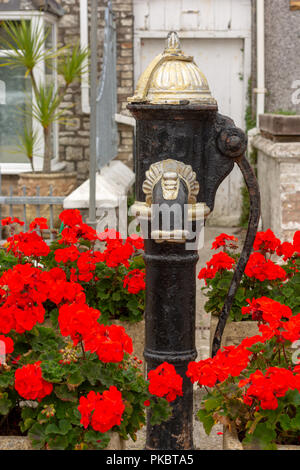 Antique water pump in a Pentewan street, St Austell, South Cornwall, England, UK surrounded by red flowers. - Stock Photo