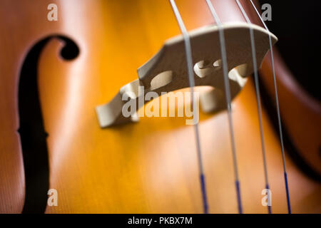 Closeup detail view at the upright bass - Stock Photo