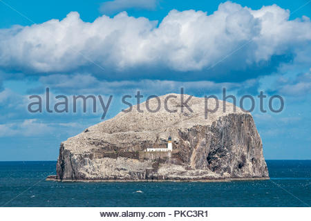 North Berwick, East Lothian, Scotland, UK, 12th September 2018. UK Weather: A beautiful sunny but windy day on the Eastern Scottish coastline. The Bass Rock in the Firth of Forth, home to the world's largest colony of Northern gannets sparkles white in the sunshine. The gannets will be leaving as the month draws to an end, and the rock will turn brown until they arrive again next year - Stock Photo