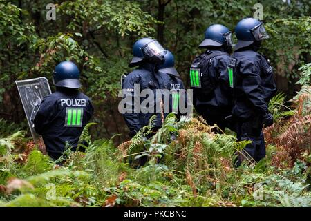 13 September 2018, North Rhine-Westphalia, Kerpen: Police officers are standing in the Hambach Forest. Authorities want to start evictions in the Hambach Forest. Photo: Marius Becker/dpa - Stock Photo