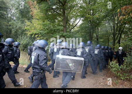 13 September 2018, North Rhine-Westphalia, Kerpen: Police officers go to the Hambach Forest. Authorities want to start evictions in the Hambach Forest. Photo: Oliver Berg/dpa - Stock Photo