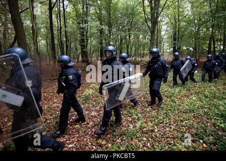 13 September 2018, North Rhine-Westphalia, Kerpen: Police officers are walking in the Hambach Forest. Authorities want to start evictions in the Hambach Forest. Photo: Marius Becker/dpa - Stock Photo