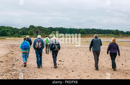 Group of walkers on guided walk on Hedderwck beach, John Muir Country Park, Dunbar, East Lothian, Scotland, UK - Stock Photo