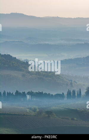 early morning in the Tuscany - Stock Photo