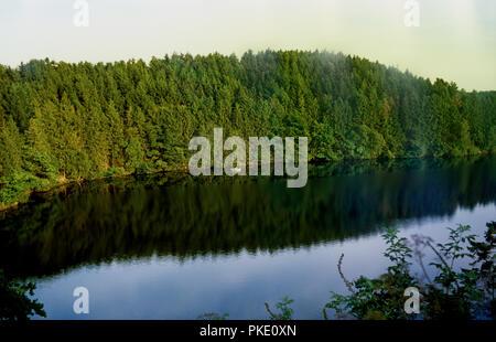 Landscape impressions of the Hautes Fagnes, in East-Belgium, near the German border (Belgium, 16/08/2008) - Stock Photo