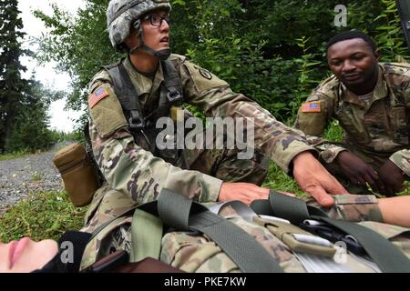 """U.S. Army Spc. Inook Cho (left) from Charlie Company, 725th Brigade Support Battalion (Airborne), 4th Infantry Brigade Combat Team (Airborne), 25th Infantry Division,  treats a simulated patient with a suspected spinal injury July 26, 2018 at Joint Base Elmendorf-Richardson, Alaska. The """"Cobra Medics"""" conducted a four day """"Best Medic"""" challenge to select two medics to be sent as competitors to the USARAK best medic competition. - Stock Photo"""