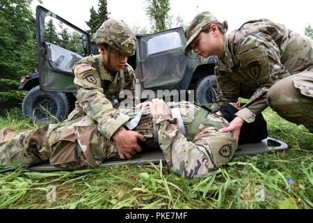 """U.S. Army Sgt. Steven Gildersleeve and Spc. Harley Wallace (right)  from Charlie Company, 725th Brigade Support Battalion (Airborne), 4th Infantry Brigade Combat Team (Airborne), 25th Infantry Division, prepare to secure a simulated patient with a suspected spinal injury July 26, 2018 at Joint Base Elmendorf-Richardson, Alaska. The """"Cobra Medics"""" conducted a four day challenge to select two medics to be sent as competitors to the USARAK best medic competition. - Stock Photo"""