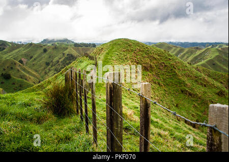 Fence posts stretch into the distance, the Tahora Saddle,Forgotten World Highway, New Zealand. Pastoral landscape with green hills and grey cloudy sky - Stock Photo