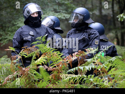 13 September 2018, North Rhine-Westphalia, Kerpen: Police officers are standing in the Hambach Forest. The police secure the beginning of an evacuation of the Hambach Forest. Photo: Oliver Berg/dpa - Stock Photo