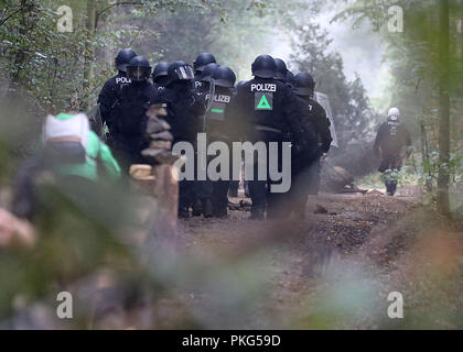 13 September 2018, North Rhine-Westphalia, Kerpen: Cops are walking through the forest. The police secure the beginning of an evacuation of the Hambach Forest. Photo: Oliver Berg/dpa - Stock Photo