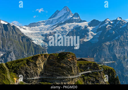 First Cliff Walk by Tissot with lookout platform in the hiking area First, view at the peak Schreckhorn, Grindelwald, Bernese Oberland, Switzerland - Stock Photo