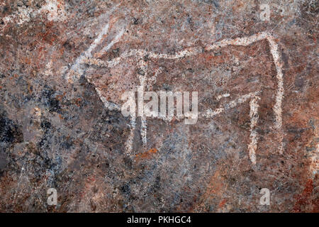 Bushmen (san) rock painting of eland antelopes, Northern Cape, South Africa - Stock Photo