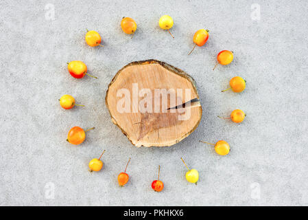 Apple tree stump with copy space surrounded by a circle of colorful cherry apples, on concrete background. - Stock Photo