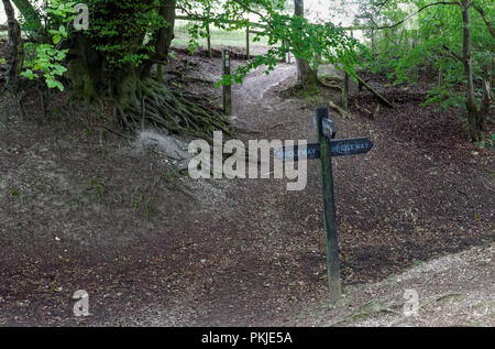 Bridleway and ridgeway sign on Coombe Hill in the Chiltern Hills, Buckinghamshire, England United Kingdom UK - Stock Photo