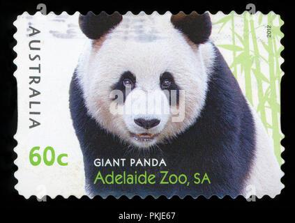 AUSTRALIA - CIRCA 2012: A stamp from Australia shows image of a Giant Panda, Adelaide Zoo, SA, circa 2012. - Stock Photo
