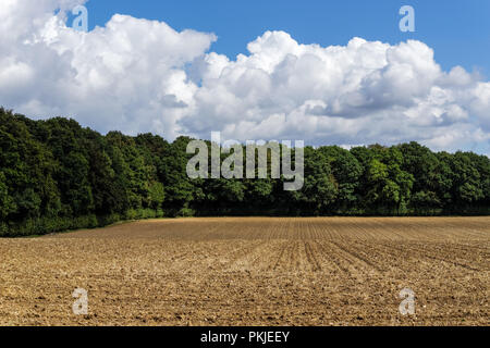 Rural landscape in the Chiltern Hills, Buckinghamshire, England United Kingdom UK - Stock Photo