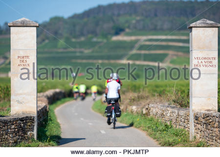 The 'Voie des vignes (Vine Route) long-distance cycling route, city gate 'porte des Avaux', in Burgundy, between Beaune and Santenay (central-eastern - Stock Photo