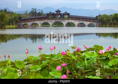 Qinhuangdao in hebei province nandaihe ecological garden - Stock Photo