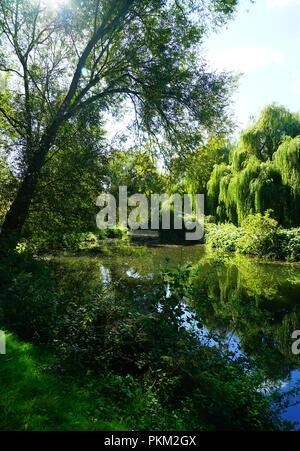 The River Stort near Bishops Stortford (portrait) - Stock Photo