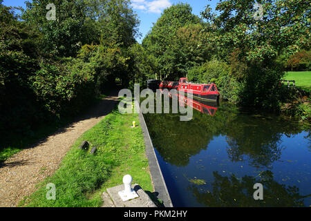A view from the tow path on the Stort Navigation - Stock Photo