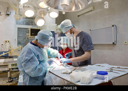 Veterinary surgeons make surgery for dog in the operating room of a veterinary clinic. Vets doing surgery in the clinic. Medicine, pet, animals, health care and people concept. - Stock Photo