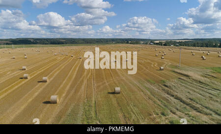 Haystacks straw left after harvesting wheat Aerial view round bales of straw in the meadow. Hay bale. Agriculture field with sky. Rural nature in the farm land. Straw on the meadow. Wheat yellow golden harvest in summer. Countryside natural landscape. Grain crop, harvesting. - Stock Photo