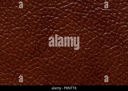 Shiny contrast brown leather texture. High resolution photo. - Stock Photo