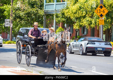 Bird-in-Hand, PA, USA - July 24, 2015: An Amish man in a horse-drawn wagon with two young boys drives on the Old Philadelphia Pike in Lancaster County - Stock Photo