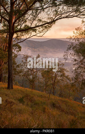 Sunrise with golden sky and mist lying in valley below forest at Tooloom National Park, NSW Australia. - Stock Photo