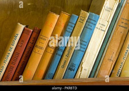 Classroom of Antonio Machado in the old university - books detail, Baeza, Jaen province, Region of Andalusia, Spain, Europe. - Stock Photo